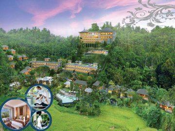 Royal Tulip Saranam Resort and Spa Bedugul Profile